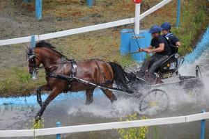 Dillenburg 2012 187